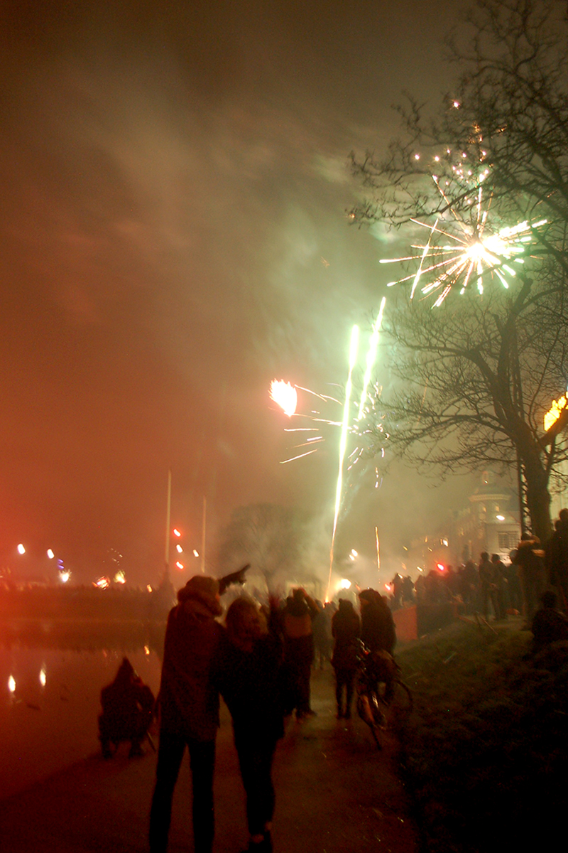 People Watching Fireworks Near Dronning Louises Bro